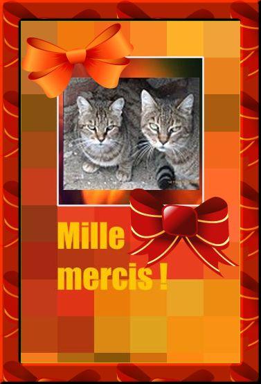 SOS : MIRIEL et FEELING ont besoin de vous