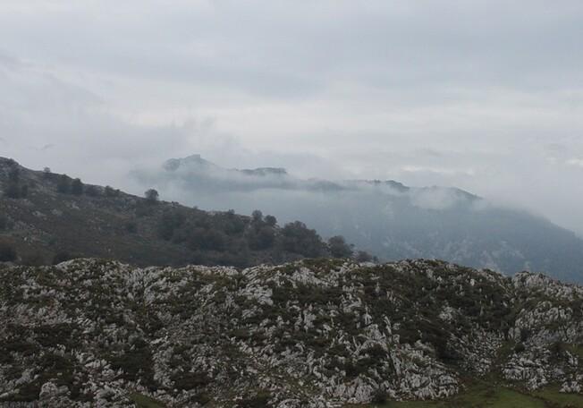 5 Sur la route du lac de Covadonga (44)