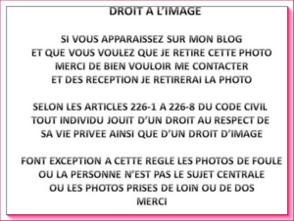 DROIT A L'IMAGE