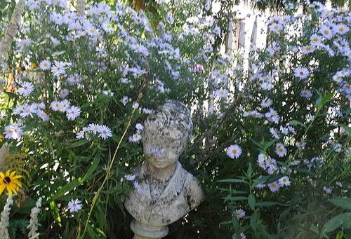 Un tour du jardin en octobre