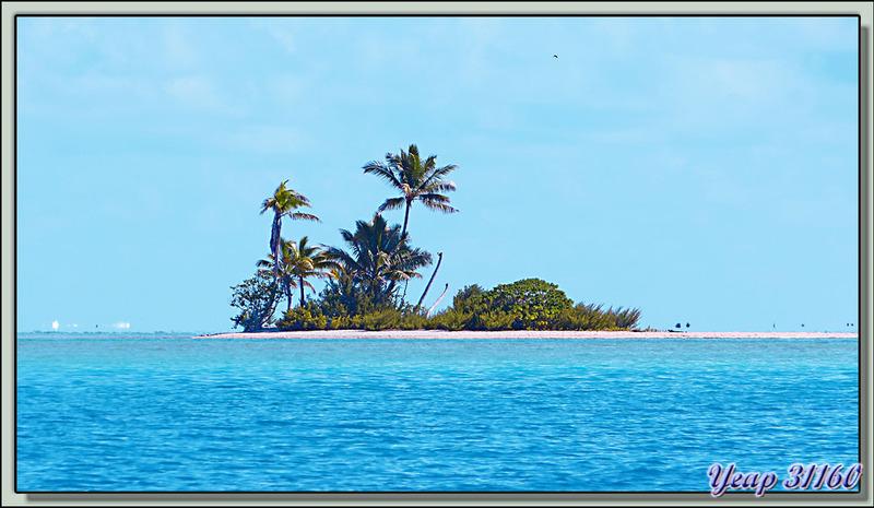 """Avant d'arriver sur notre """"île déserte"""" nous découvrons de petites merveilles - Fakarava - Polynésie française"""