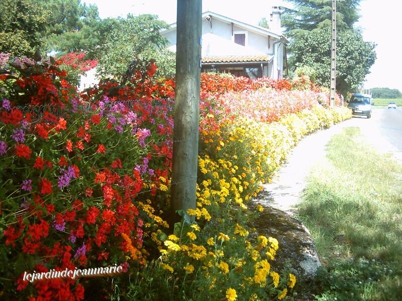 en Gironde,sur la route de Villandraut,a Landiras un magnifique jardin