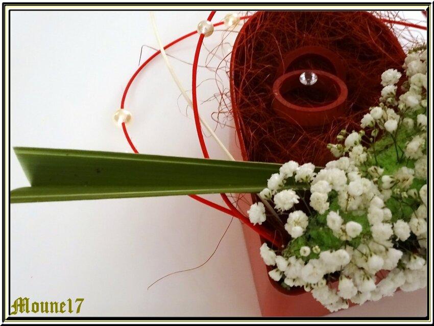 Les fleurs de février