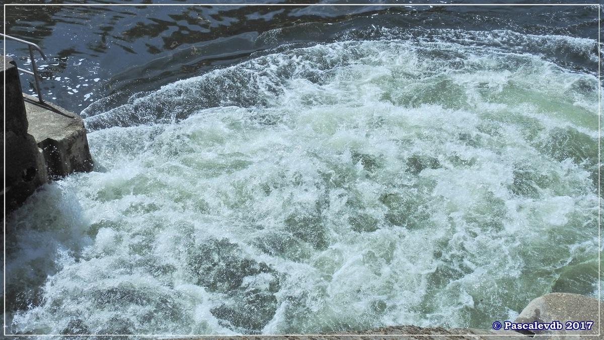 Printemps le long du canal latéral à la Garonne - Avril 2017 - 6/10