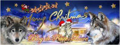 Pour la Noël