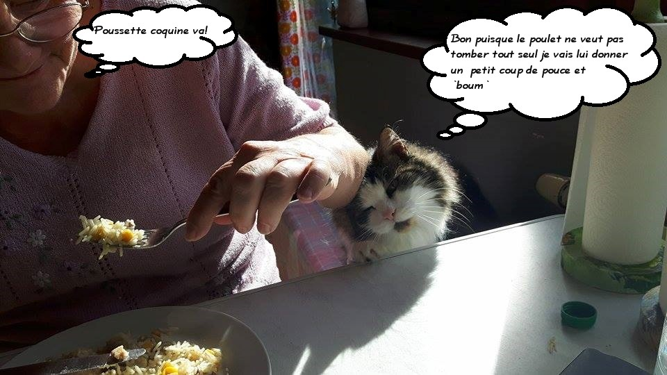 La gourmandise...