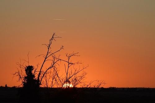 ... juste un tit lever de soleil...