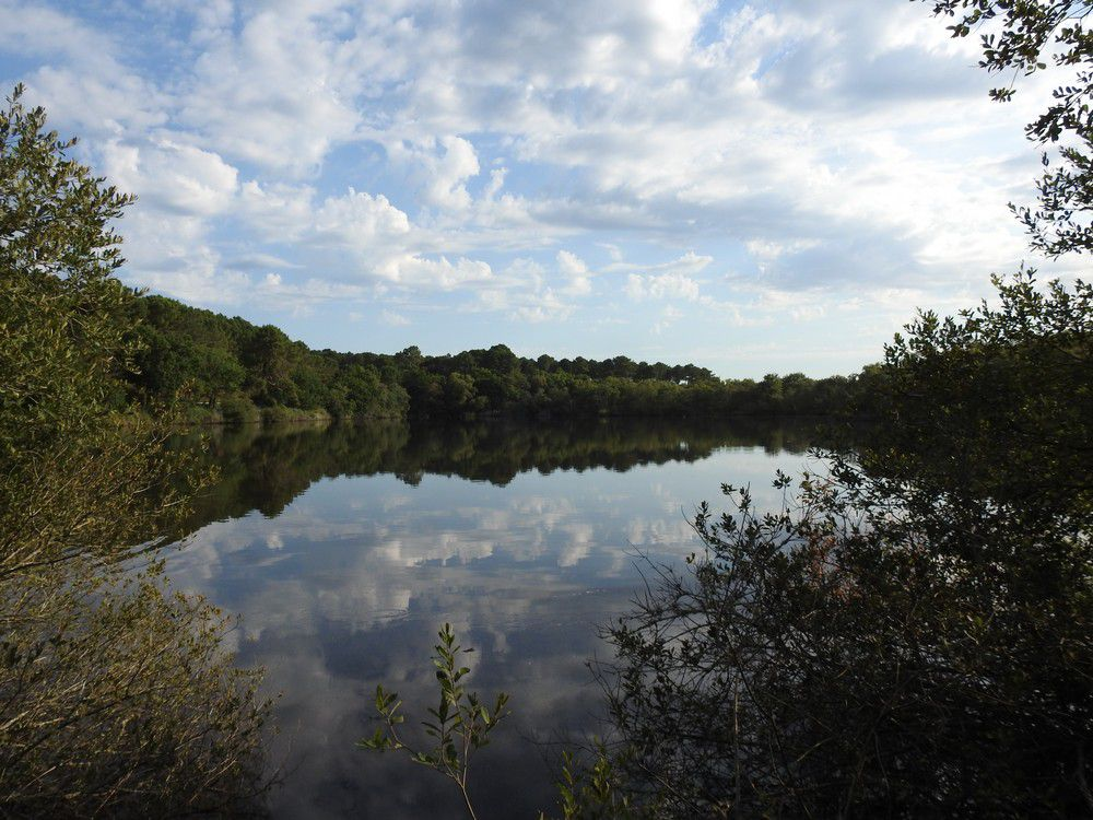 Balade autour de la lagune de Contaut...