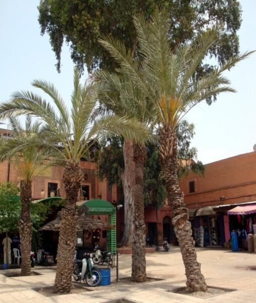 Place Kzadria 3