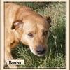 Bouba B 2