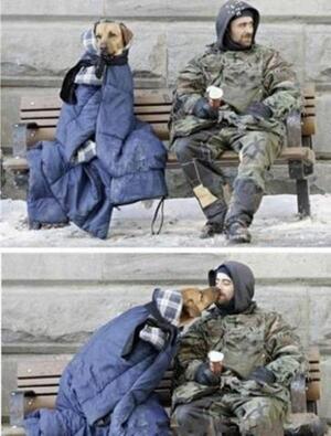 Wolu1200 : Accueil des personnes en période de grand froid