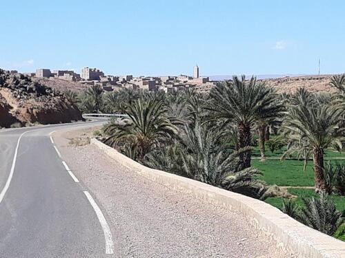 La palmeraie et le village