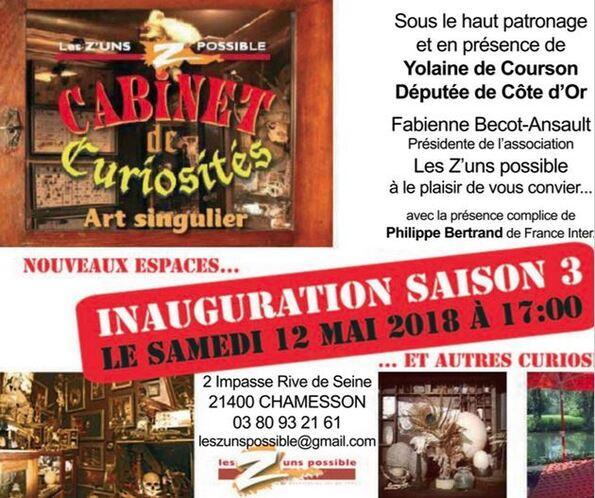 Le cabinet de curiosités de la Galerie des Z'Impossible s'est agrandi et superbement étoffé !