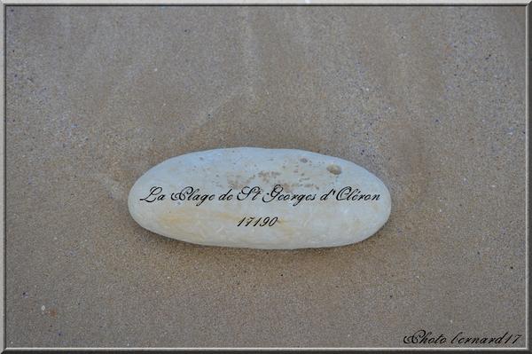 C4-La Plage de Saint-Georges-d'Oléron