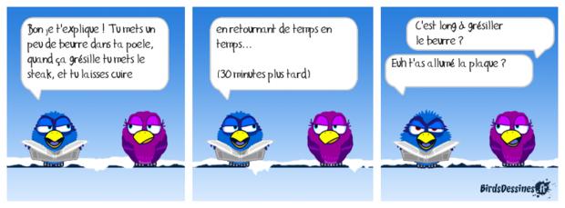 ♥Le carnaval des oiseaux♥