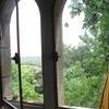 Gourg-72-fenetres-gothique.jpg