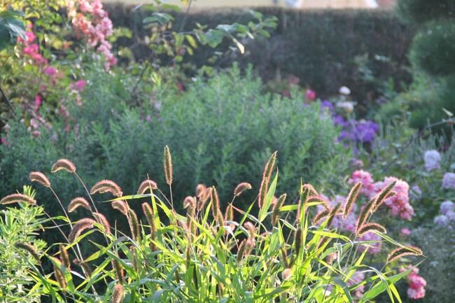 Journée au jardin