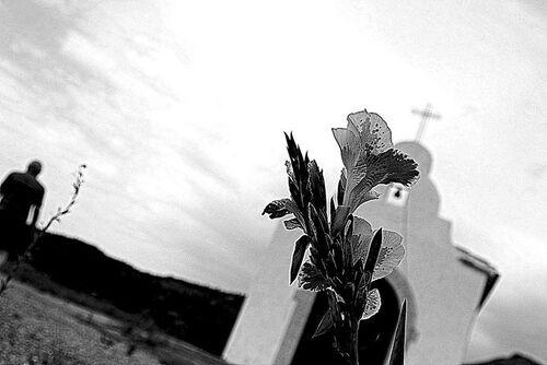 Crist 28 (Photo de Pinuccio Vaccaro)