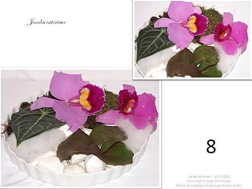 2012 03 13 jardin interieur floriscola (11)