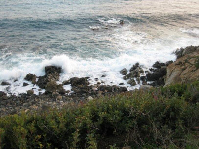 iles-sanguinaires-111110-020.jpg