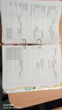 Un journal de classe qui va avec ma classe flexible...