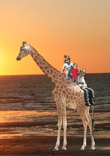 a dos de girafe