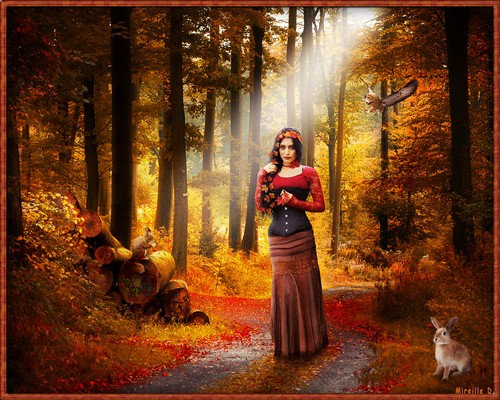 Promenade Automnale en Forêt avec Photoshop
