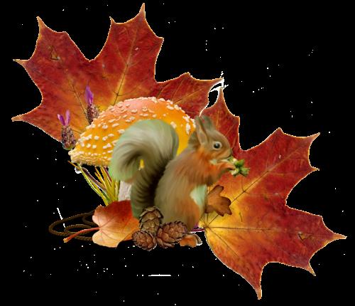 l) *** EMMA *** rêve l'automne et le frais *** bonne après-midi *** (l) - ♥  ♥ ♥ Ma vie, ma famille, mes ami(e)s ♥ ♥ ♥