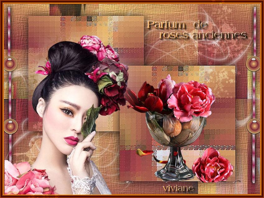Le parfum des roses anciennes