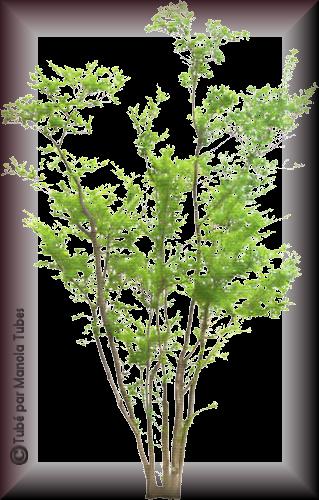 Tubes d'arbre 2971