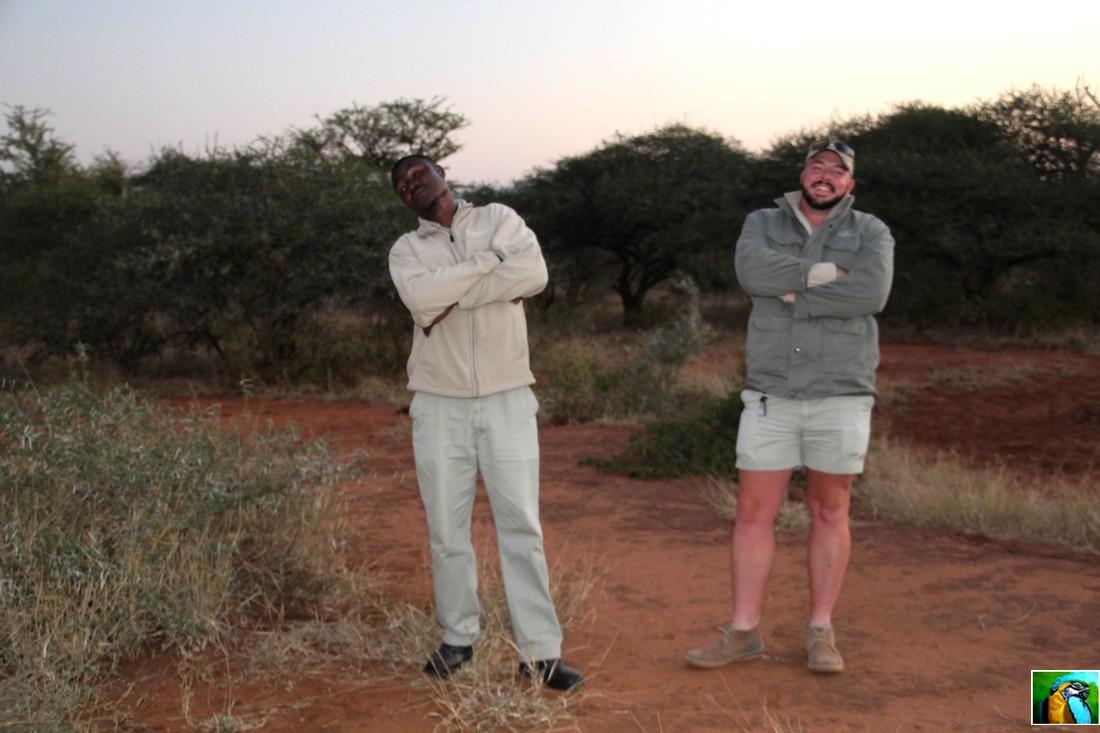Afrique du Sud: juin 2018: vers la fin des safaris