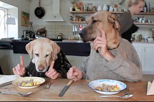 Un-diner-de-chiens.jpg