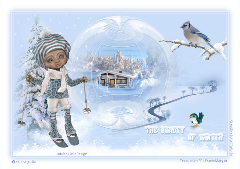 *** The beauty of winter ***