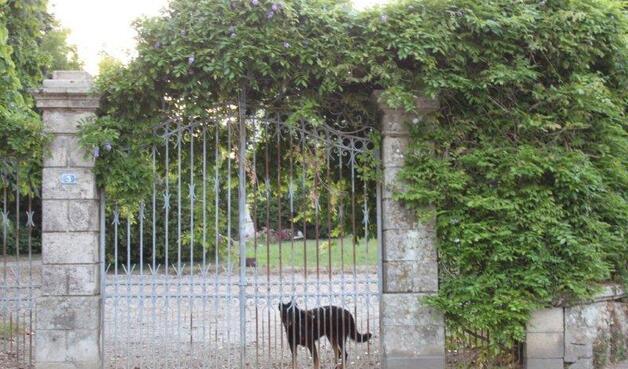 St Etienne-du-Bois (33)