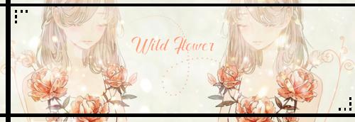 Thème Wild Flower