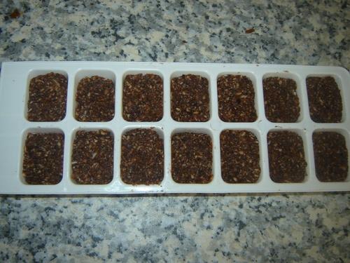 Bouchées chocolatées dattes noisettes coco