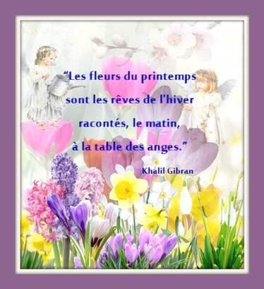 """""""Du bonheur au jardin"""" ..."""