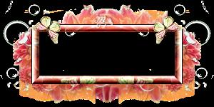 déco modulable manga 1