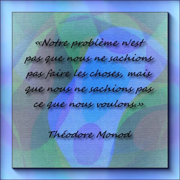 Citations et Proverbes 3:  Les Élans du coeur - Théodore Monod