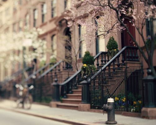 photography, beautiful, nyc, street, sidewalk, new york