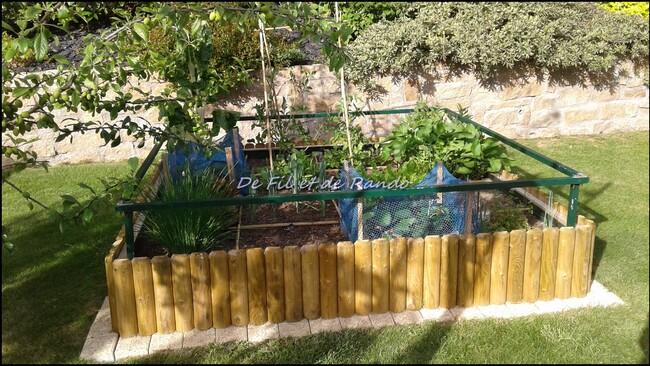Bienvenue dans mon jardin (2)