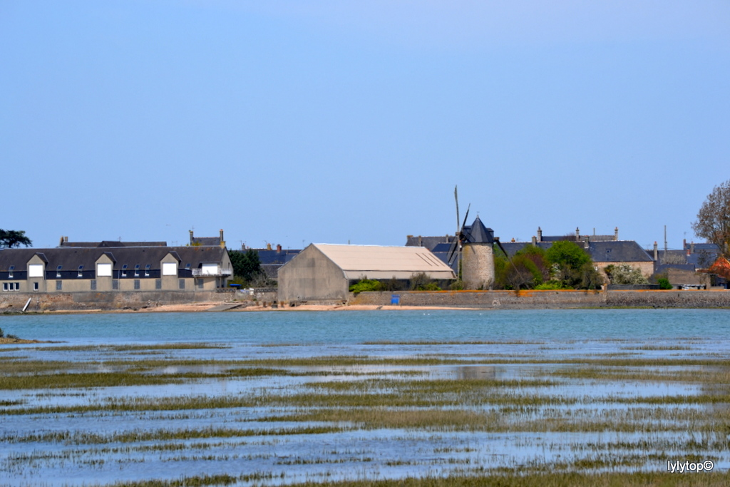 Saint vaast La Hougue