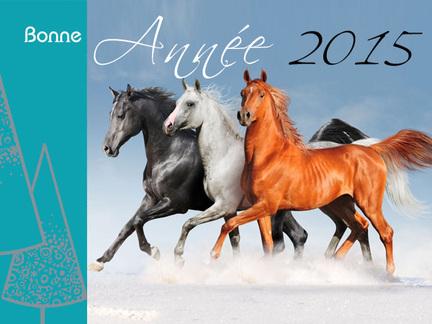 Carte de voeux 2015 chevaux