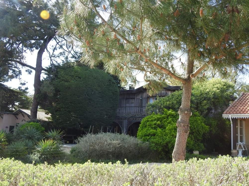 Les 44 hectares au Cap-Ferret...