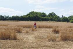 Crop Circle en Normandie