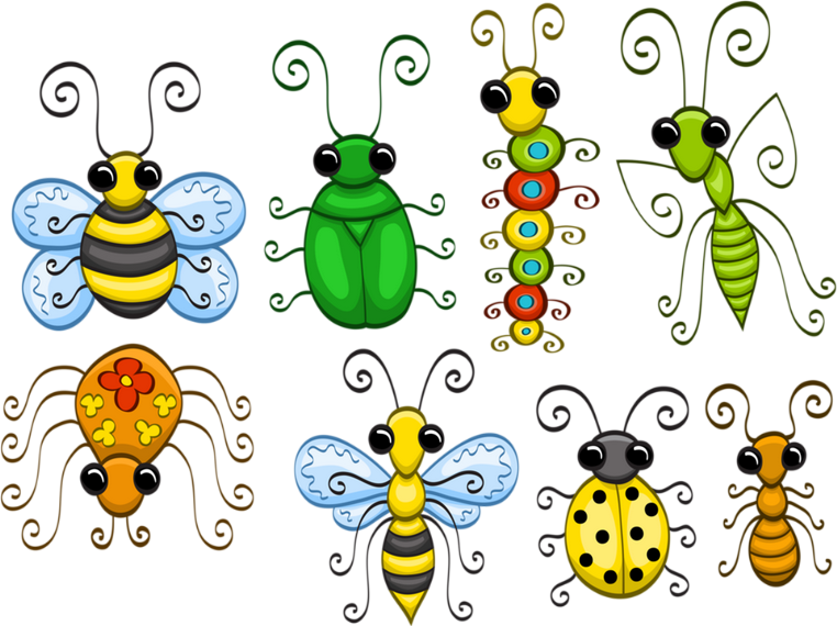 Tubes Animaux.. Insectes