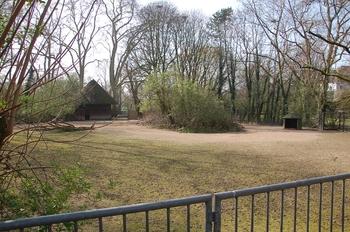 zoo cologne d50 2012 172