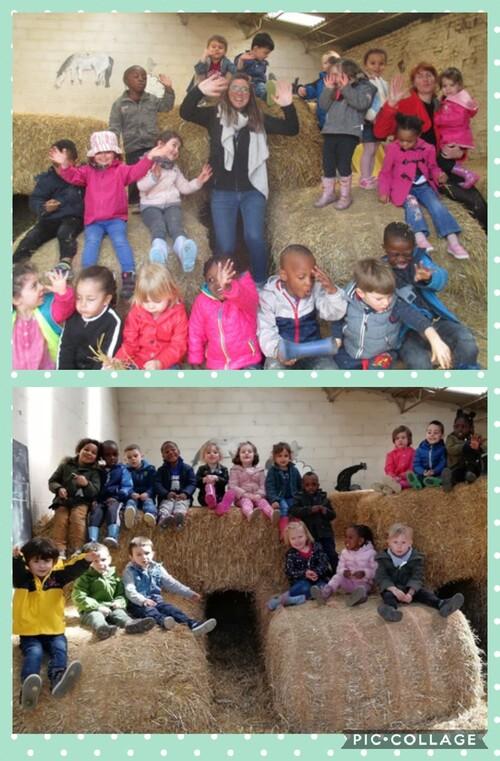 Visite à la ferme de Beauffaux pour les 1ère maternelles