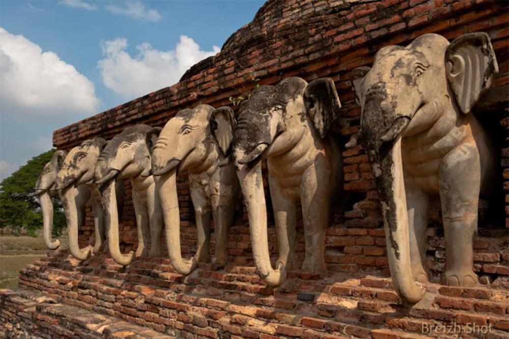 Wat Sorasak  Sukhothaï - Elephants - gros plan