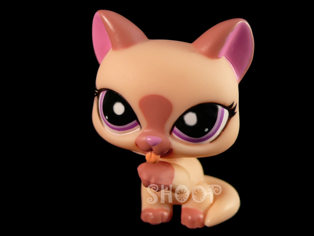 LPS 1626